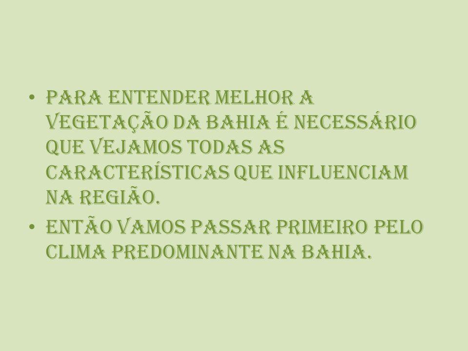 Para entender melhor a vegetação da Bahia é necessário que vejamos todas as características que influenciam na Região.