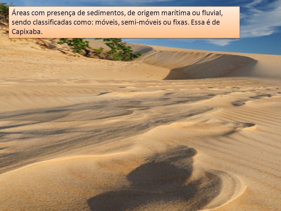 Áreas com presença de sedimentos, de origem marítima ou fluvial, sendo classificadas como: móveis, semi-móveis ou fixas.