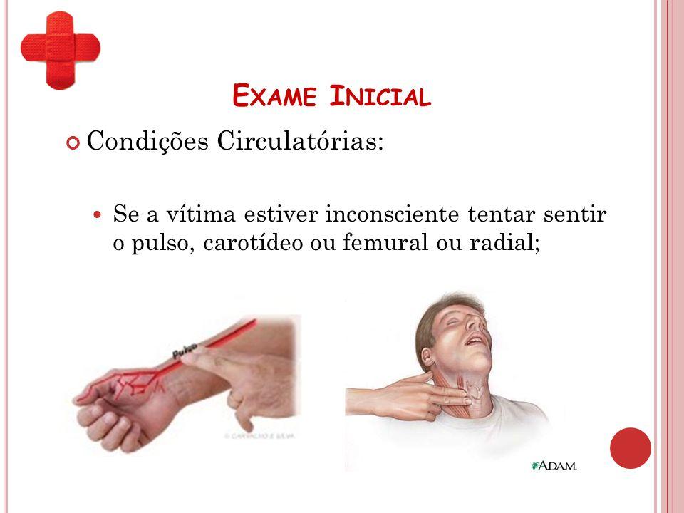 Exame Inicial Condições Circulatórias: