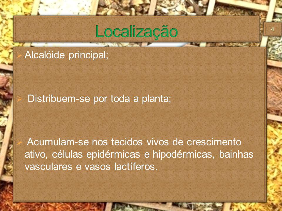 Localização Alcalóide principal; Distribuem-se por toda a planta;