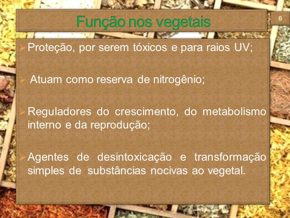 Função nos vegetais Proteção, por serem tóxicos e para raios UV;