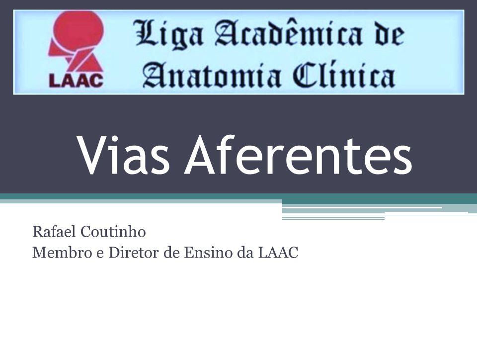 Rafael Coutinho Membro e Diretor de Ensino da LAAC