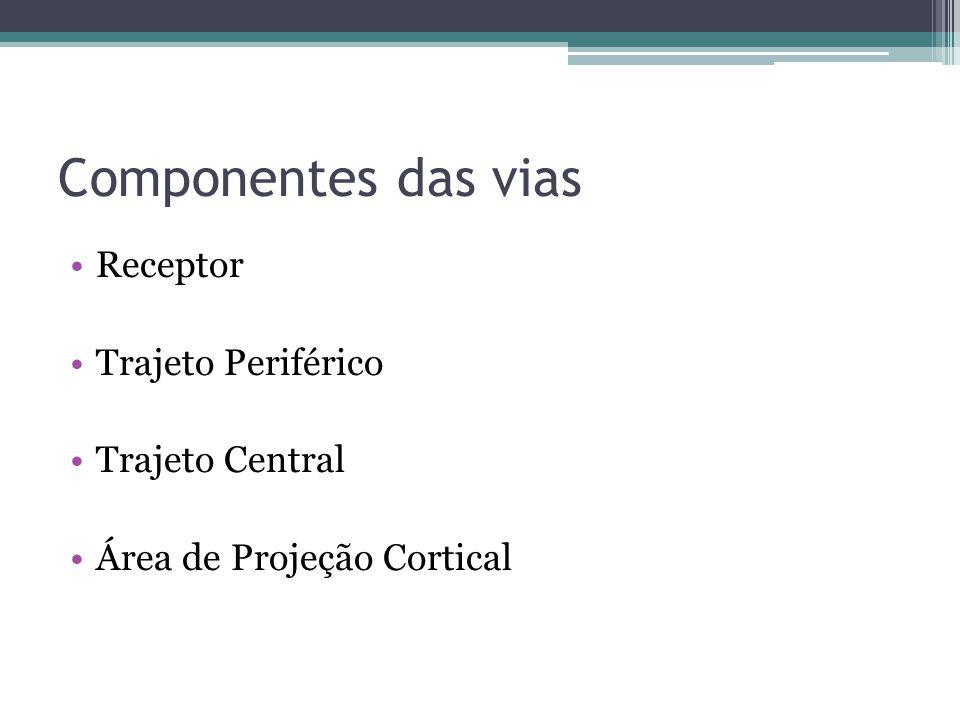 Componentes das vias Receptor Trajeto Periférico Trajeto Central