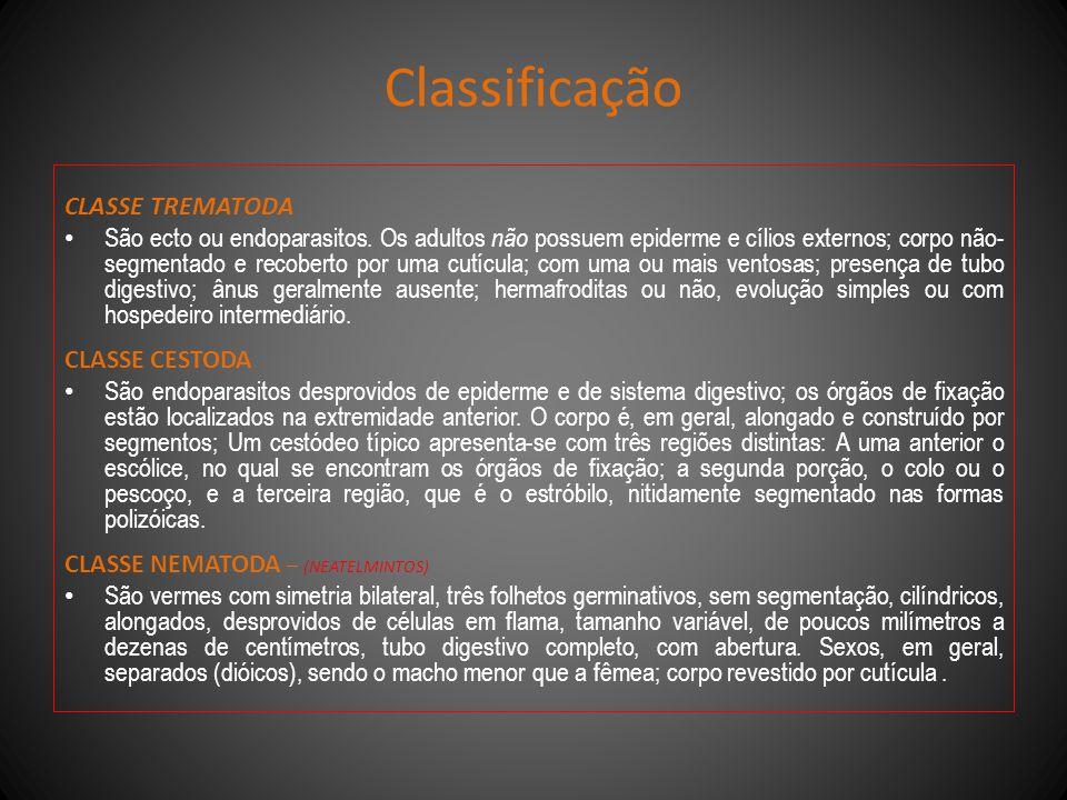 Classificação CLASSE TREMATODA