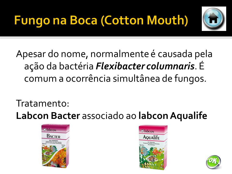 Fungo na Boca (Cotton Mouth)