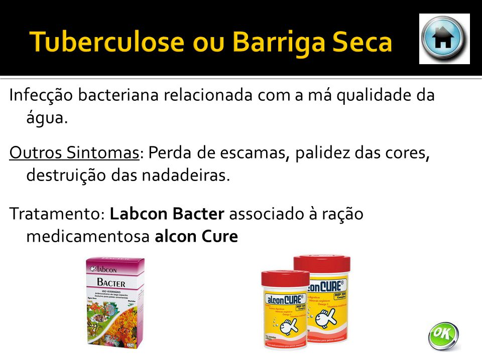 Tuberculose ou Barriga Seca