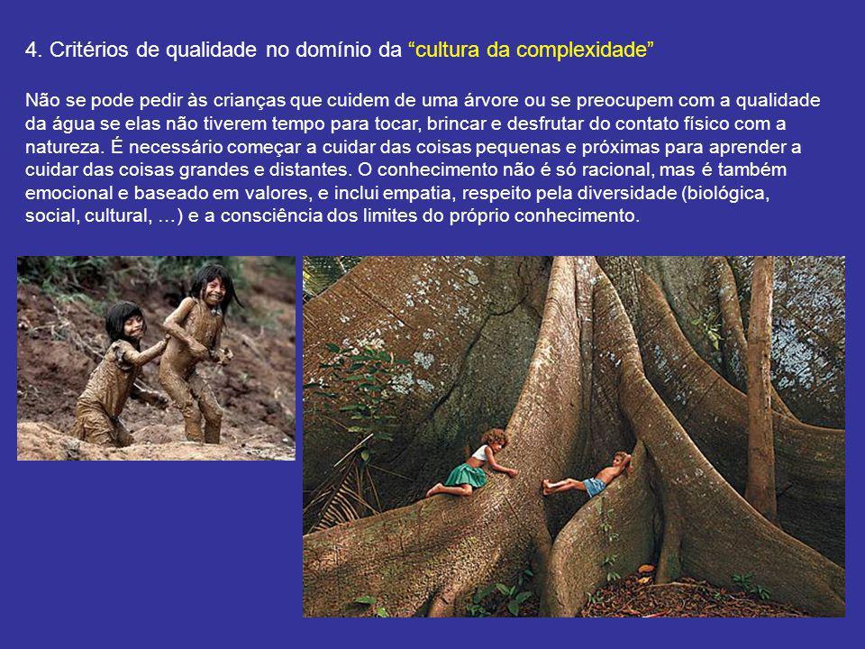 4. Critérios de qualidade no domínio da cultura da complexidade