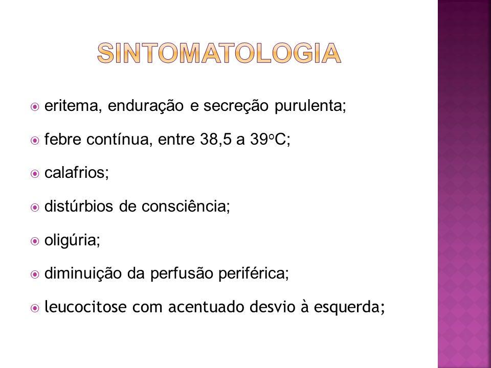 SINTOMATOLOGIA eritema, enduração e secreção purulenta;