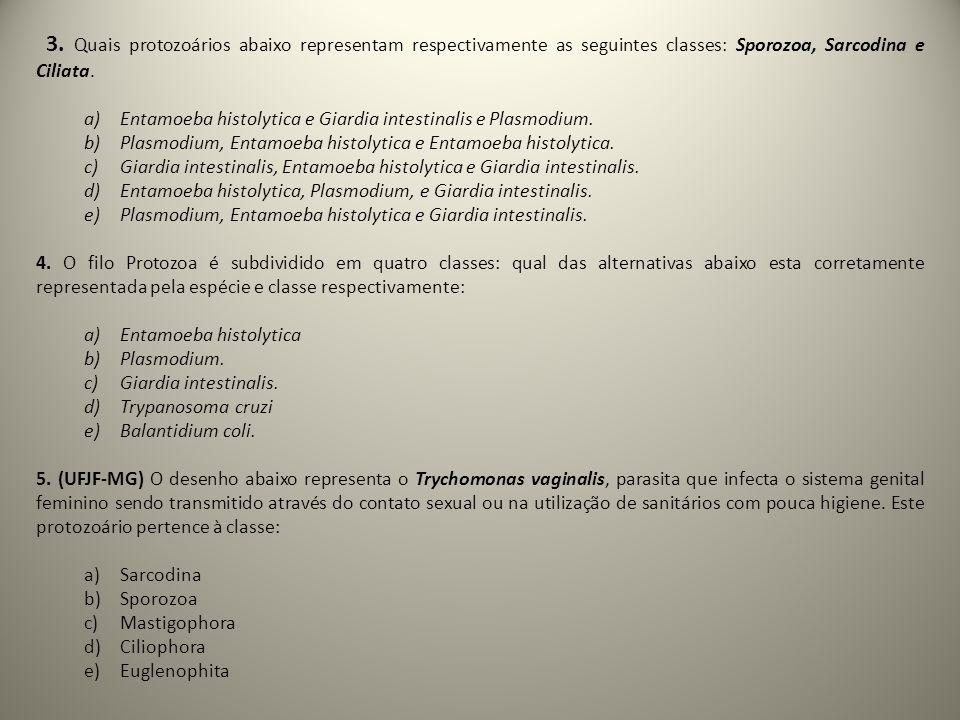 3. Quais protozoários abaixo representam respectivamente as seguintes classes: Sporozoa, Sarcodina e Ciliata.