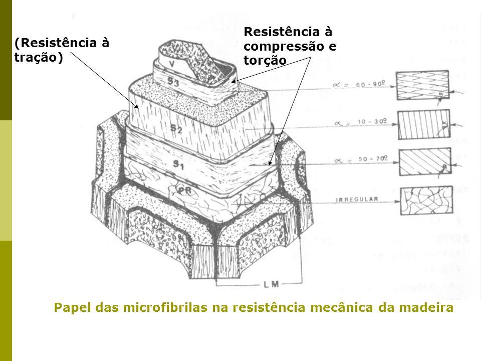 Papel das microfibrilas na resistência mecânica da madeira
