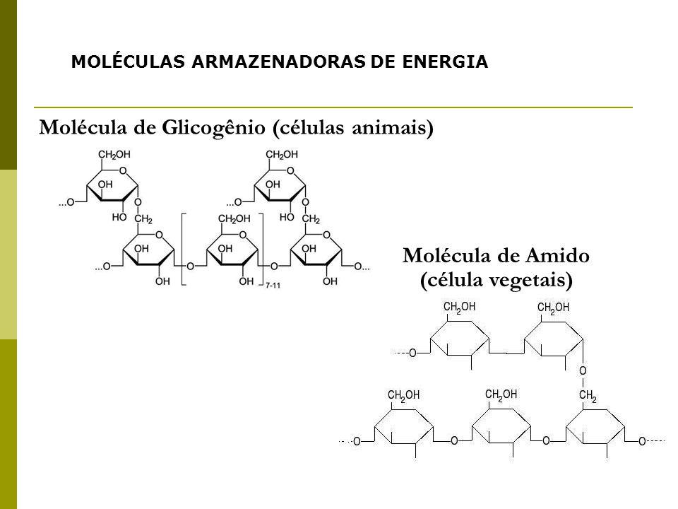 Molécula de Glicogênio (células animais)