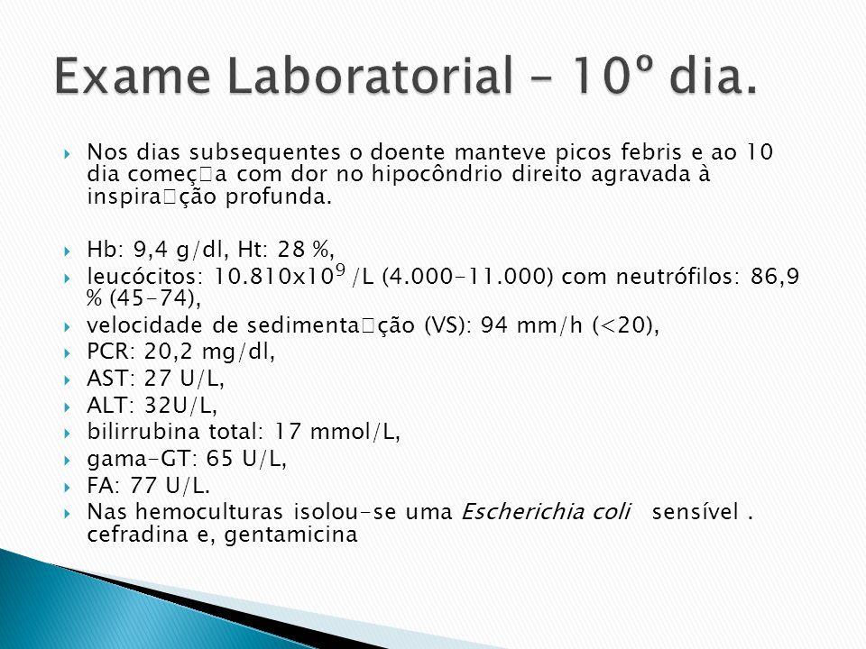 Exame Laboratorial – 10º dia.