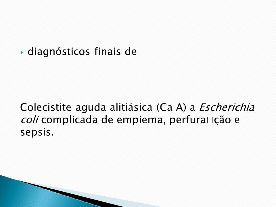 diagnósticos finais de