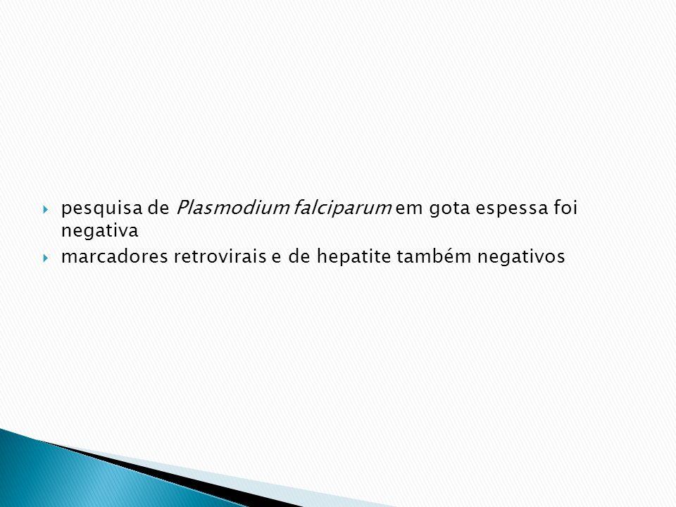 pesquisa de Plasmodium falciparum em gota espessa foi negativa