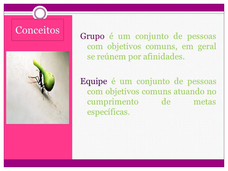 Grupo é um conjunto de pessoas com objetivos comuns, em geral se reúnem por afinidades. Equipe é um conjunto de pessoas com objetivos comuns atuando no cumprimento de metas específicas.