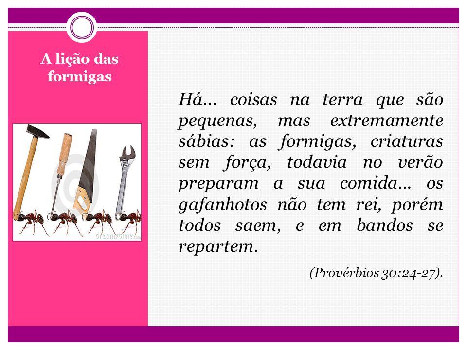 Há... coisas na terra que são pequenas, mas extremamente sábias: as formigas, criaturas sem força, todavia no verão preparam a sua comida... os gafanhotos não tem rei, porém todos saem, e em bandos se repartem. (Provérbios 30:24-27).