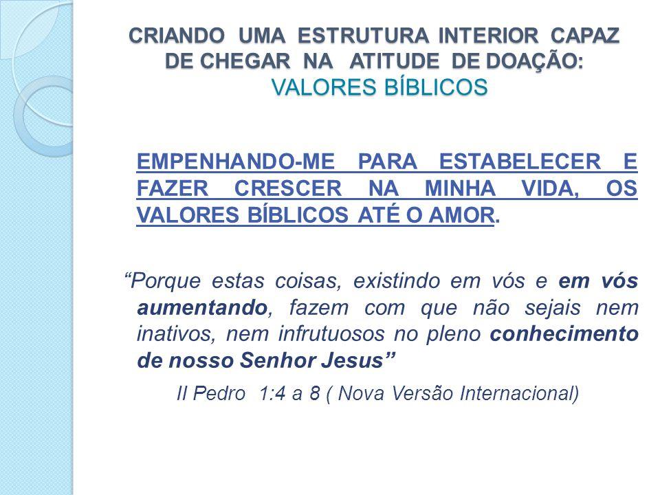 CRIANDO UMA ESTRUTURA INTERIOR CAPAZ DE CHEGAR NA ATITUDE DE DOAÇÃO: VALORES BÍBLICOS