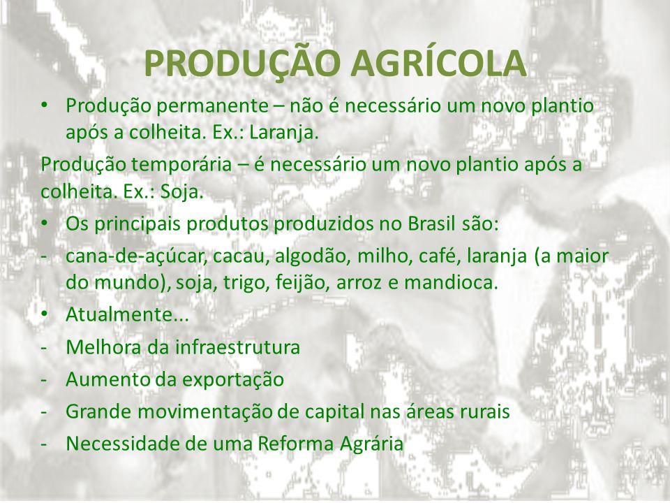 PRODUÇÃO AGRÍCOLA Produção permanente – não é necessário um novo plantio após a colheita. Ex.: Laranja.