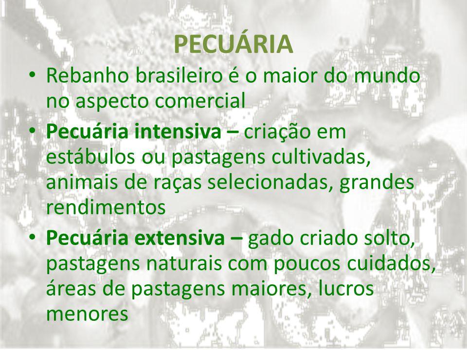 PECUÁRIA Rebanho brasileiro é o maior do mundo no aspecto comercial