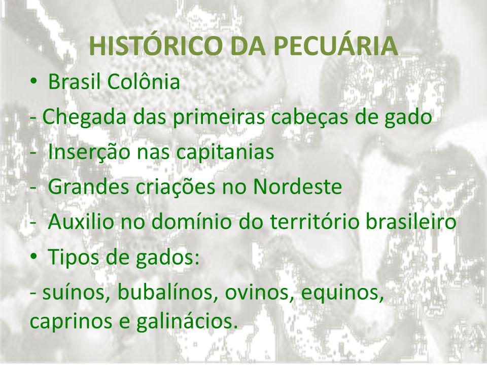 HISTÓRICO DA PECUÁRIA Brasil Colônia