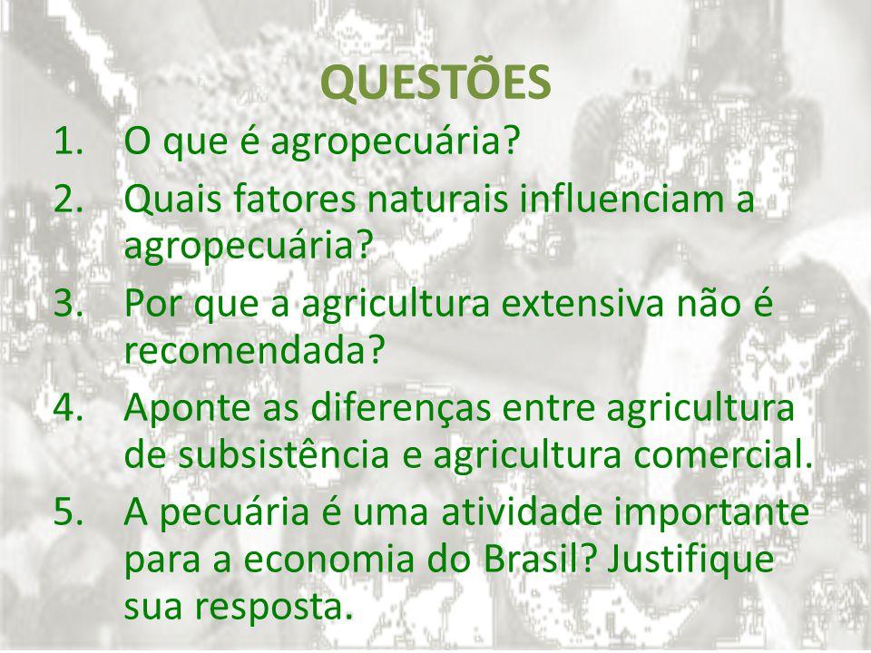 QUESTÕES O que é agropecuária