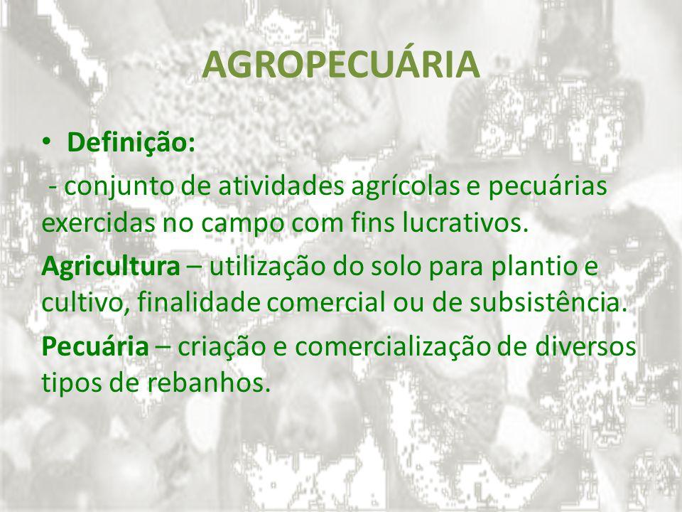 AGROPECUÁRIA Definição: