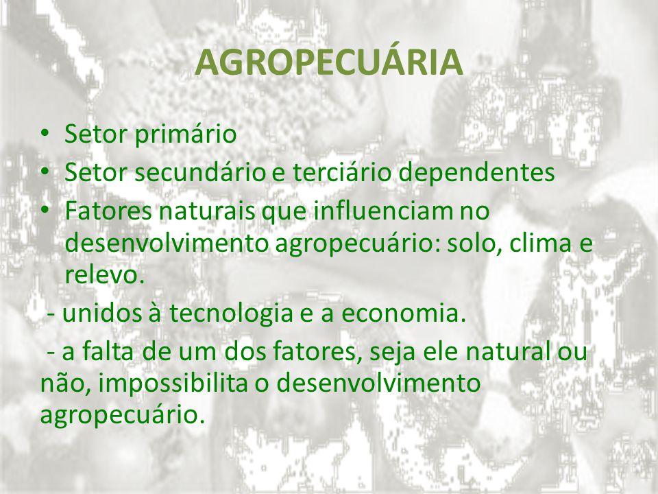 AGROPECUÁRIA Setor primário Setor secundário e terciário dependentes