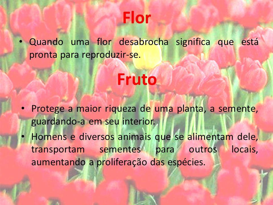 Flor Quando uma flor desabrocha significa que está pronta para reproduzir-se. Fruto.