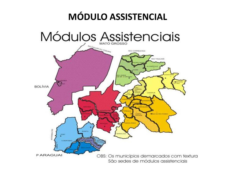 MÓDULO ASSISTENCIAL