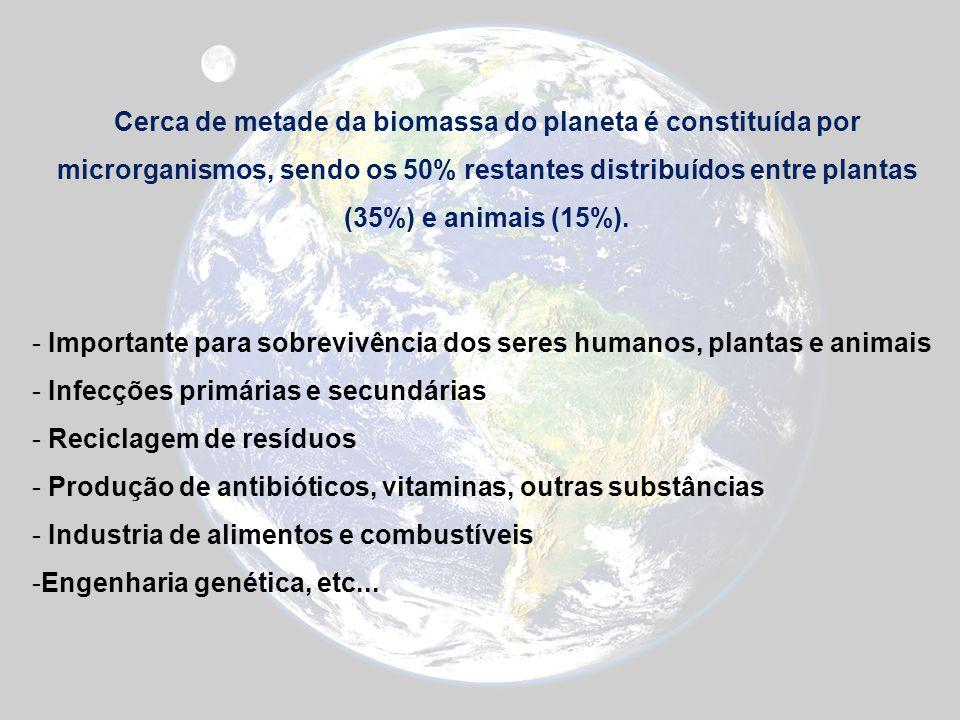 Cerca de metade da biomassa do planeta é constituída por microrganismos, sendo os 50% restantes distribuídos entre plantas (35%) e animais (15%).