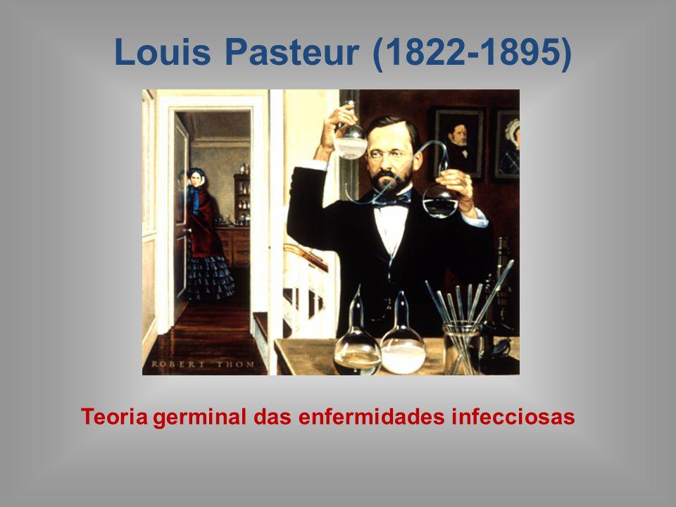 Louis Pasteur (1822-1895) Teoria germinal das enfermidades infecciosas