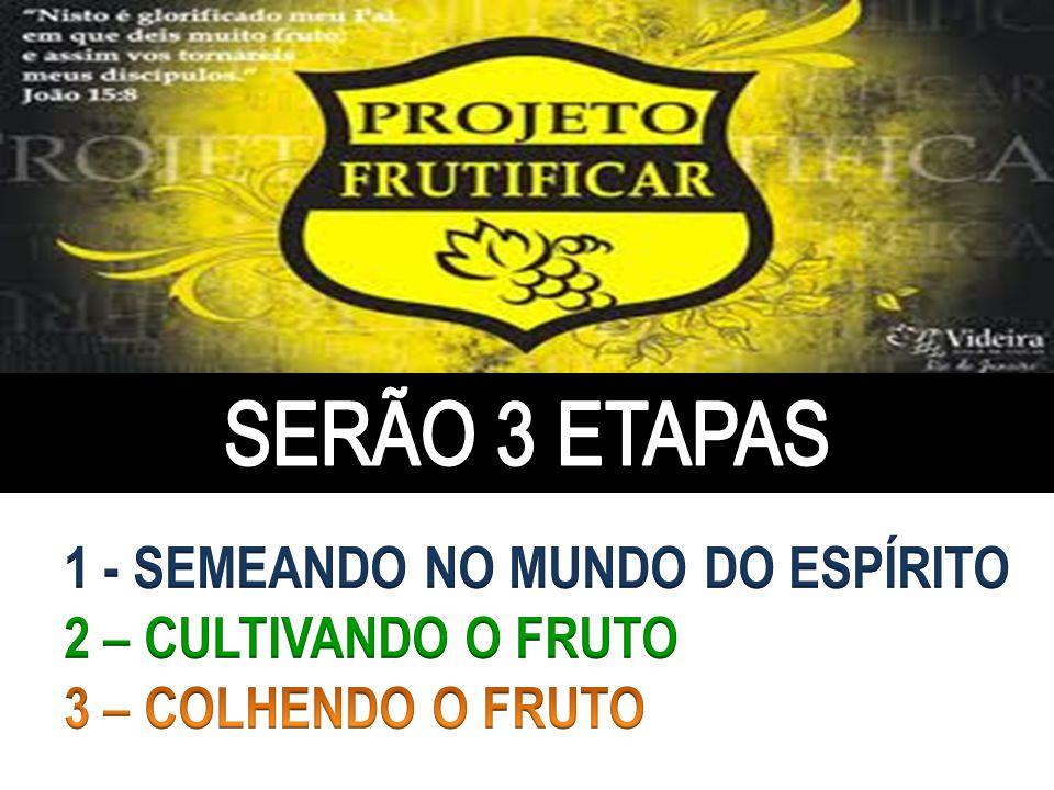 SERÃO 3 ETAPAS 1 - SEMEANDO NO MUNDO DO ESPÍRITO