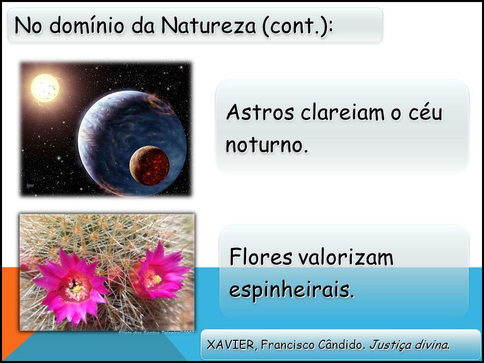 No domínio da Natureza (cont.):