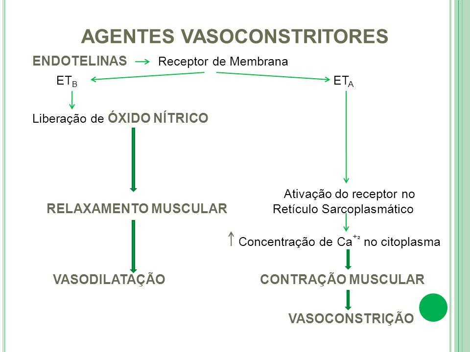 AGENTES VASOCONSTRITORES
