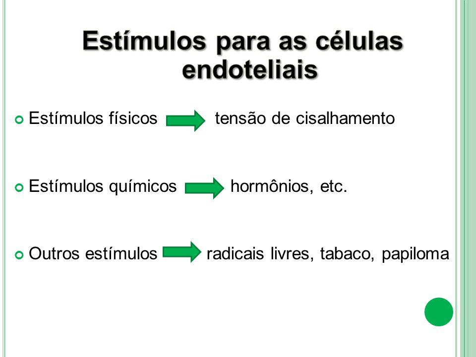 Estímulos para as células endoteliais
