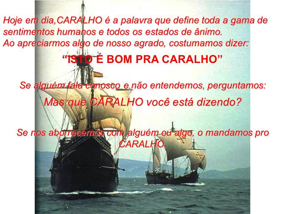 ISTO É BOM PRA CARALHO