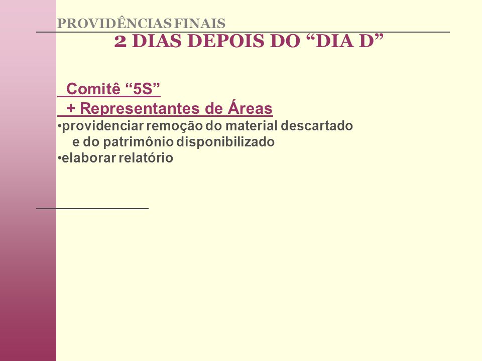 2 DIAS DEPOIS DO DIA D Comitê 5S + Representantes de Áreas