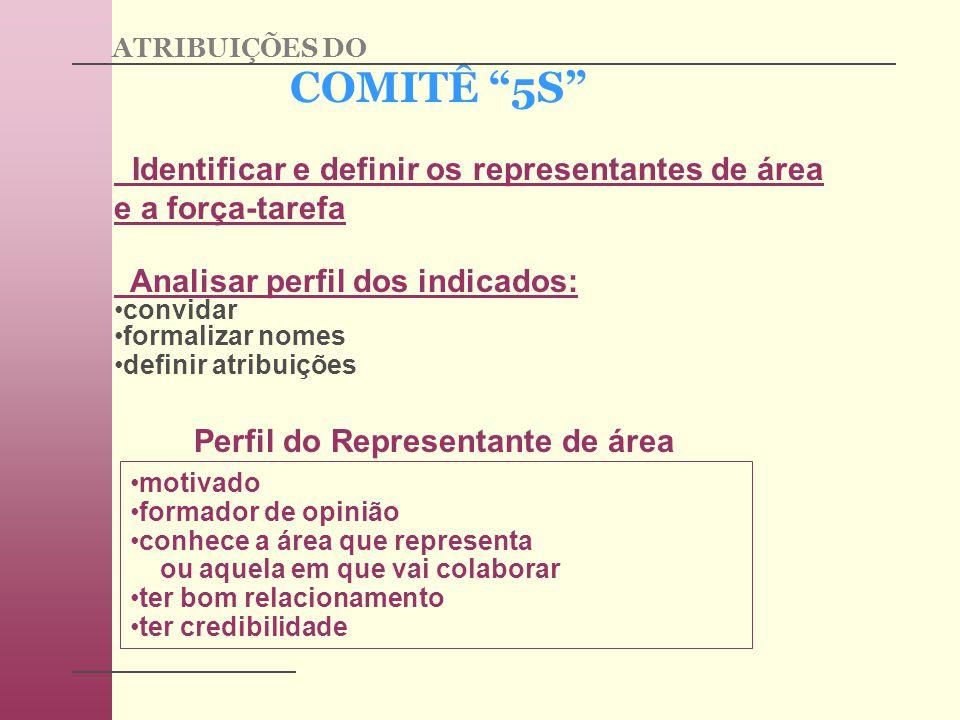 COMITÊ 5S Identificar e definir os representantes de área