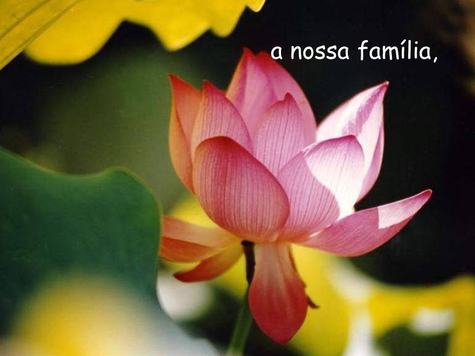 a nossa família,