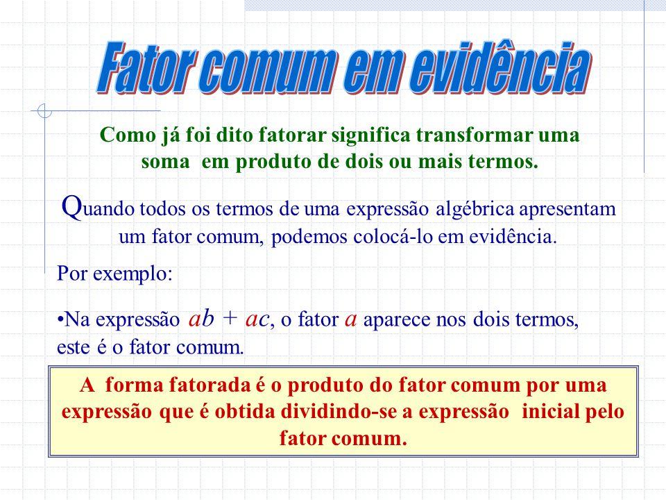 Fator comum em evidência