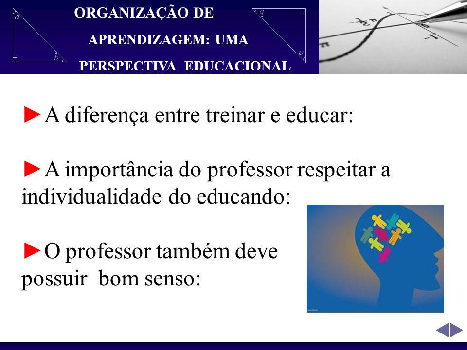 ►A diferença entre treinar e educar: