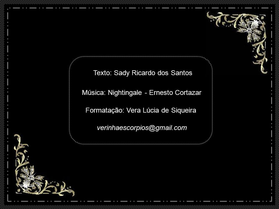 Texto: Sady Ricardo dos Santos