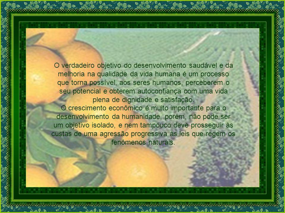 O verdadeiro objetivo do desenvolvimento saudável e da