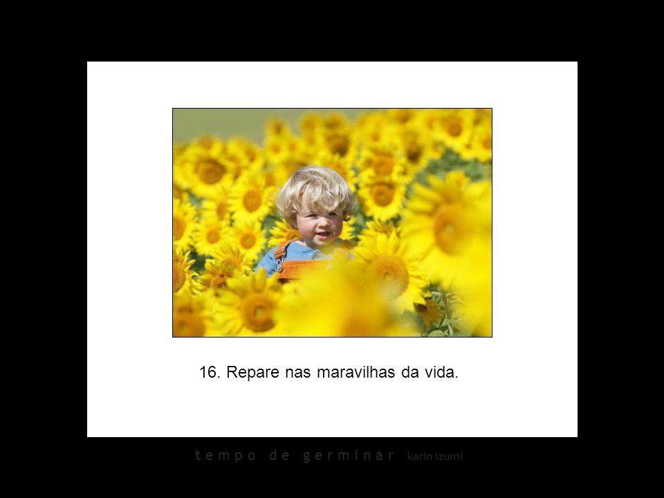 16. Repare nas maravilhas da vida.