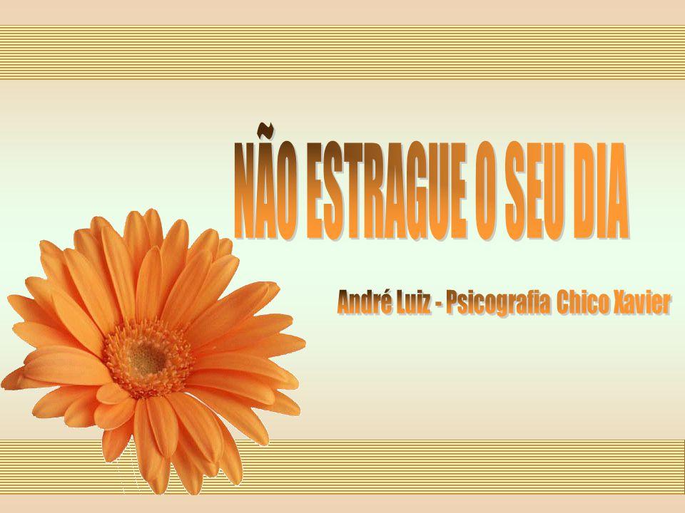 André Luiz - Psicografia Chico Xavier