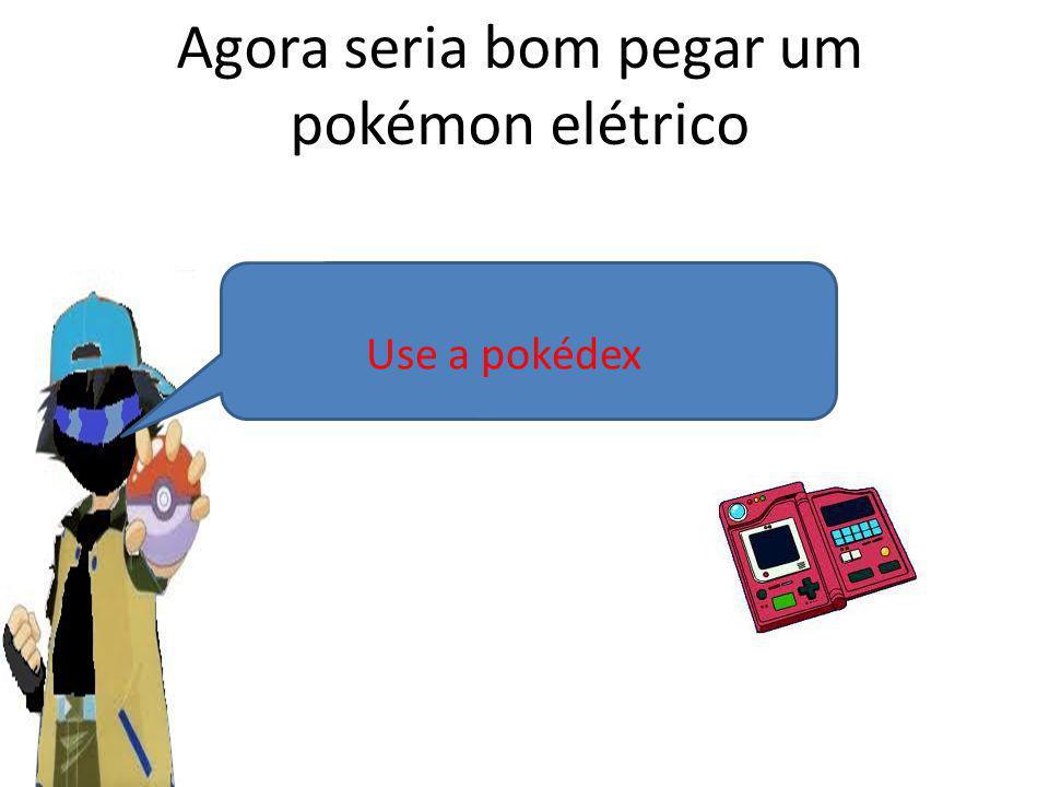 Agora seria bom pegar um pokémon elétrico