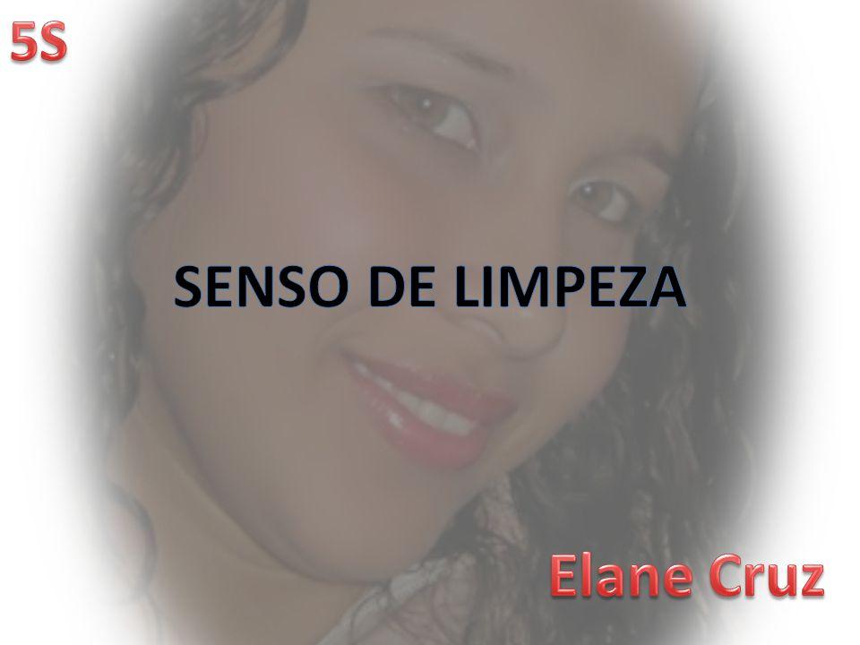 SENSO DE LIMPEZA Elane Cruz