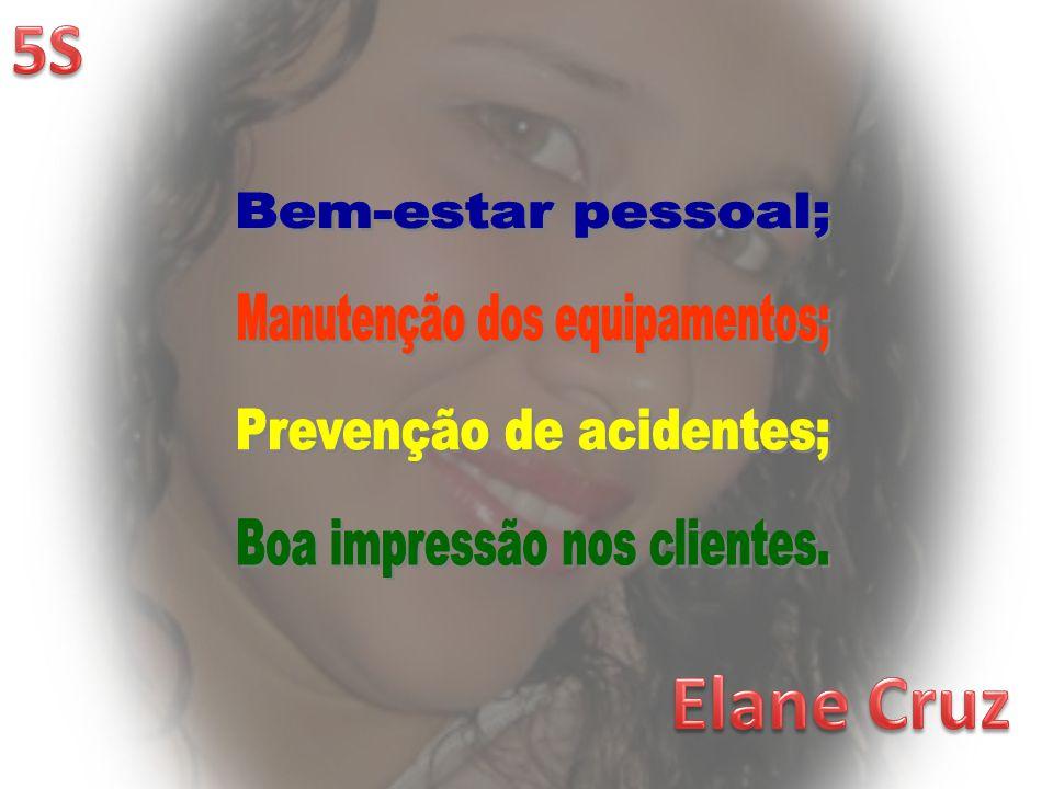 Elane Cruz 5S Bem-estar pessoal; Manutenção dos equipamentos;
