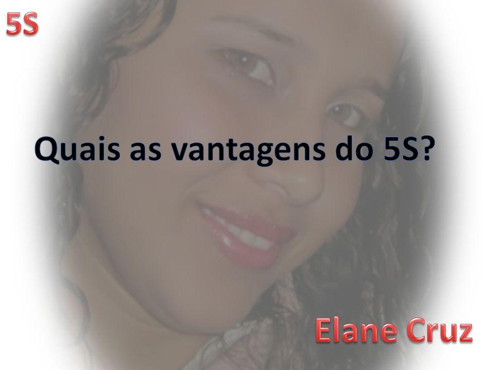 Quais as vantagens do 5S Elane Cruz