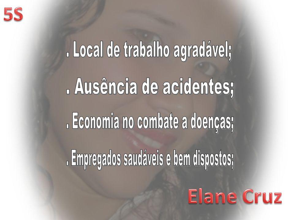 Elane Cruz 5S . Local de trabalho agradável; . Ausência de acidentes;
